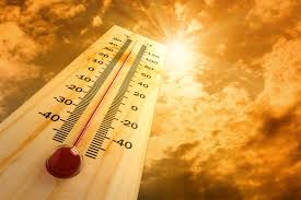 Florida's unbearable heat and humidity in summer